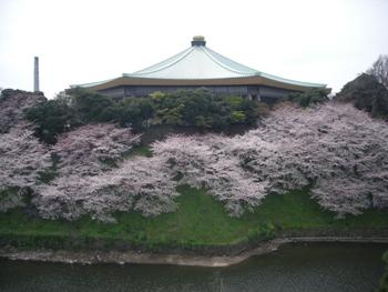 chidorigafuchi2.jpg